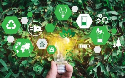 How Procurement Can Progress Sustainability and Circular Supply Chains